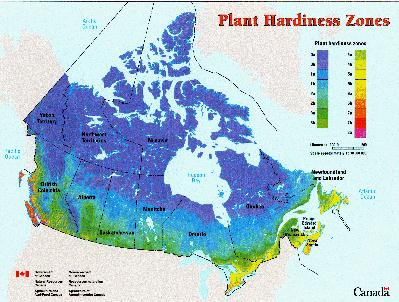 and agri-food canada beenplease click here to grow Growing+zones+canada